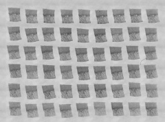 Embryo 8020 original glass slides 5