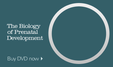 Buy the Biology of Prenatal Development DVD