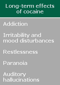 Long-term effects of cocaine: Addiction, irritability and mood disturbances, restlessness, paranoia, and auditory hallucinations