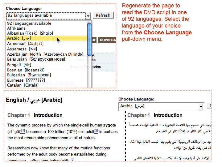 This image shows how to read the DVD script in one of 92 languages.