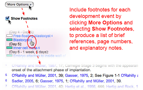 Image that shows how to include footnotes for each development event.