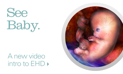 See Baby. A new intro video to EHD.