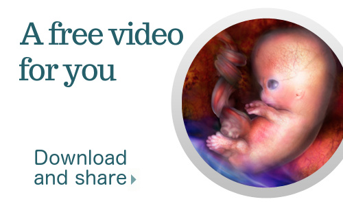 Your life before birth. A free video.