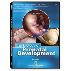 The Biology of Prenatal Development